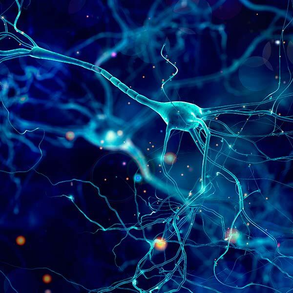Certificado en enfermedad de Alzheimer y otras demencias online