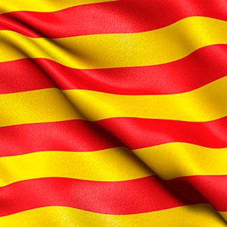 Curso Universitario en Legislación Sanitaria de la Comunidad Autónoma de Cataluña (ICS) online